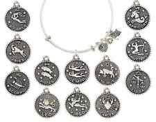Charm Bracelets Alex And Ani Style All Constellations Zodiac Star Sign Astrology