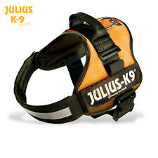 Julius K9 Original Powerharness Dog Harness orange NEW