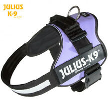 Julius K9 Original Powerharness Dog Harness purple NEW