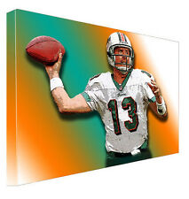 Dan Marino Miami Dolphins Stretched Canvas Poster Wall Art Painting shirt