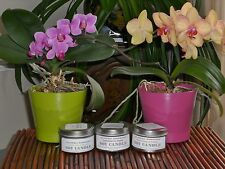 L. Lavation presents: Handcrafted soy candles w/ lead-free wick - 8oz. tin