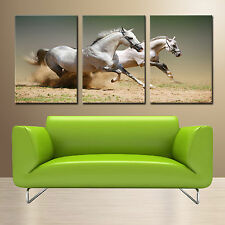 Horse ready to hang 3 panel wall art print mounted on MDF/Better than canvas art