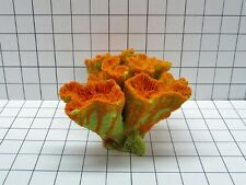 Med Brain Coral Decoration #325 made to order **$50 minimum order