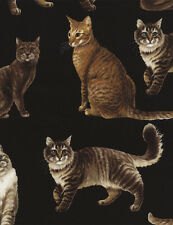 Kitty Cat Cotton Fabric! Cartoon Cats and Realistic Cats! Meow! Prices Vary