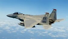 F-15 in Flight 71st Squadron  :  USAF US Air Force Airplane Photo Print