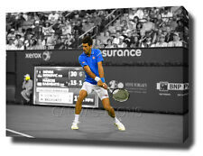 NOVAK DJOKOVIC CANVAS PRINT POSTER PHOTO 2015 WALL ART WIMBLEDON TENNIS TENIS