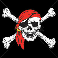 Jolly Rodger One Eye Pirate Flag Skull T-Shirt Tee