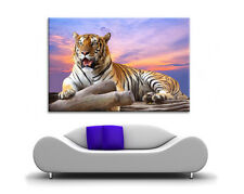 LARGE CANVAS WALL ART PURPLE SUN SET PICTURE BEAUTIFUL TIGER RELAXING PRINT NEW