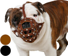 "English Bulldog 13""-3"" Leather Basket Dog Muzzle Boxer American Bulldog 2 colors"