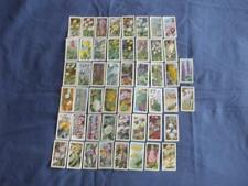 "BROOKE BOND CARDS:WILD FLOWERS SERIES 2:""ISSUED IN"":BUY INDIVIDUALLY NO's 1-50"
