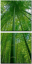 BAMBOO/Ready to Hang Digital Art Prints/2 Panel Set/for Upgrading Canvas Prints