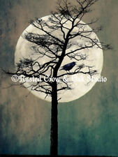 Rustic Crow Tree Moon Black Bird Teal Cream Matted Picture Wall Art Print A189