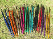 Wholesale! 10-100Pcs beautiful pheasant tail feathers 30-35cm/12-14inches