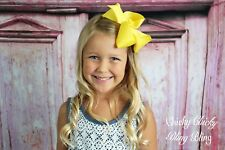 Girls toddler grosgrain boutique Large Chunky Hair bow clip fashion NWT