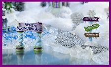 Miniature Dollhouse FAIRY GARDEN CHRISTMAS Frozen Snow Fairies Winter Sign