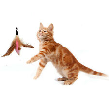 5x Feather REFILLS Substitution for Da Bird Feather Wand Cat Toy Interactive Toy