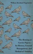 The Homing Or Carrier Pigeon by William Bernhard Tegetmeier
