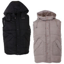 Mens Colin's Hooded Warm Quilted Zip Up Studded Gilet Bodywarmer In 2 Colours