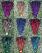 10 pcs Colorful pheasant Performance Stage tail feathers 30-35 cm / 12-14 inches