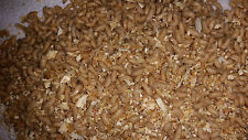 Maggots Spikes Grubs Live Bait Best Quality Ice Fishing Bait, Reptile Feed