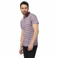 The Collection Mens Purple Striped Polo Shirt From Debenhams
