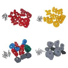 Professional 10x Assorted Climbing Holds Rock Climbing Wall Gym Hand Feet Holds