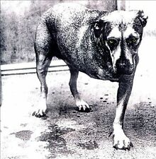 Alice in Chains by Alice in Chains (CD, Nov-1995, Columbia (USA))