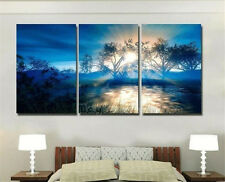 Abstract Canvas Decor Oil Painting beautiful scenery HD Art Painting Framed Art