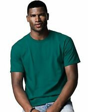 Hanes HAN-5250--L Mens Tagless T Shirt (- Choose SZ/Color.