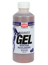 Hammer Nutrition 26 Srvg Hammer Gel + Bonus Single Srv