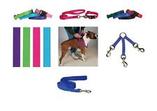 COORDINATING Nylon Collars, Leads & Harnesses for Dogs Choose Sizes & Colors