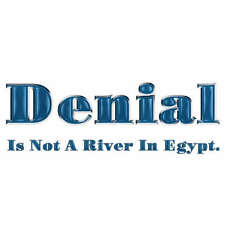 Denial Is Not A River In Egypt. Men T-Shirt
