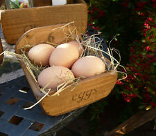 (NEW)Farmhouse 6 eggs tray / basket / box / holder~kitchen storage~ Rustic Charm