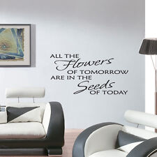 SEEDS OF TODAY Wall Quote Wall Sticker Wall Stickers Quotes Decals Murals