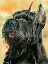 JOLLY GIANT Standard Schnauzer Dog Art Print Watercolor Painting Artist Signed