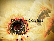 Sunflower Flower Floral Neutral Tan Home Decor Wall Art Matted Picture A205