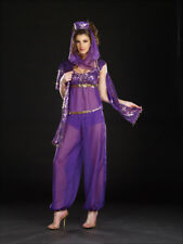 Arabian Queen Ally Kazaam Halloween Costume Genie Belly Dancer Costume Dreamgirl