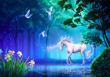 p147  Personalised poster made to order custom special present unicorn