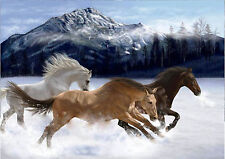p306 Personalised poster made to order custom special present Wild horses