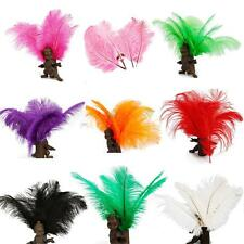 New Wholesale 10pcs Mulit-Color Natural Ostrich Feathers Home 10-12inch/25-30cm