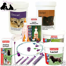 Puppy Kitten Complete Feeding Kit Welpi Lactol Milk Bottle Feeding Tube Whelping
