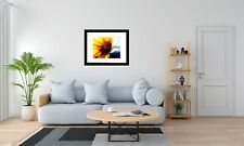 Sunflower on Windy Blue Matted Picture Photo Art Print Home Decor A608