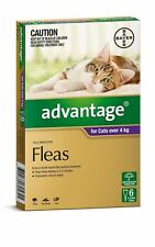 Advantage Flea Control for Cats Over 4kg - 4 or 6 Pack - Purple