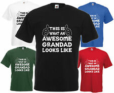 Awesome Grandad T Shirt Fathers Day Gift Xmas Present Cool Birthday Tee Funny H