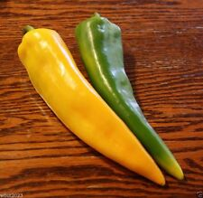 Golden Treasure Pepper,seeds (Capsicum annuum) Italian heirloom variety!