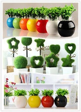 ARTIFICIAL FLOWERS TREES SMALL CERAMIC POT VASE PLANT HOME OFFICE DECOR  DIY