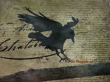 That's How the Crow Flies -  Signed Original Handmade Matted Picture A674