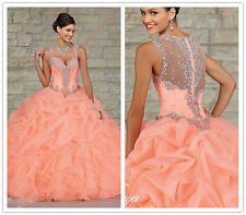 Ball Gown Quinceanera Dresses 2015 Vestidos De 15 Anos Stock Size 2-16 Sweet 15