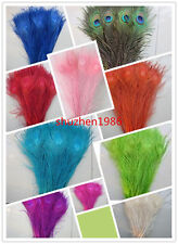 Beautiful peacock eye feathers long 10-12 inches / 25-30 cm variety of colors