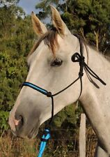 Black and AQUA blue rope training halter,mini/foal/shetland/pony/cob/full/xl!!